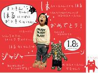 ハフュッフェン子どもの成長リポート:3歳になったハル★ちょっとサバ読んで「1.85ハフュッフェン」! - maki+saegusa
