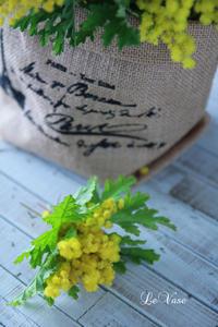 ふわふわミモザ - Le vase*  diary 横浜元町の花教室