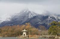冬の琵琶湖 - 浜千鳥写真館
