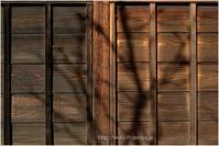 懐かしい杉板 - muku3のフォトスケッチ