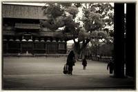 東寺-2 - Hare's Photolog