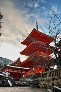 京都    1/16 東山  雪景色 - 写真部