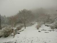 雪の筑波山  つつじヶ丘は雪景色だった - 陶芸ブログ 限 無 窯    氷裂貫入青瓷の世界