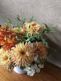 納品ついでに - 暮らしと植物のブログ