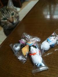 猫チョコ - すみやのひとり言・・・