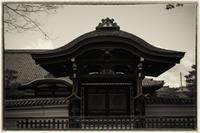 東寺-3 - Hare's Photolog