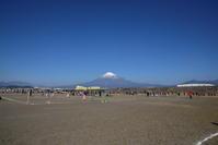 富士川緑地公園 - じいじとばあばのフォトライフ