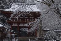 雪の室生寺 - toshi の ならはまほろば