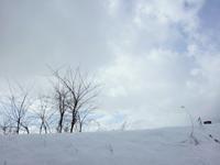 予報士が ビビらすほどには 雪降らず - 視線の先には