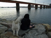 きれいなお姉さんは好き~♡ (^o^) - 犬連れへんろ*二人と一匹のはなし*