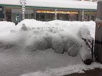 ⭐︎大雪、たいへんですねー Σ(・□・;) - 街かど 「花」 スポット