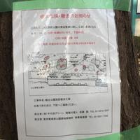 オリンピックのためにこれ以上上野公園の木を切らないでください - 日々時々旅