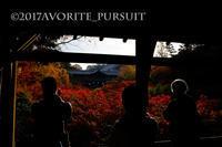 東福寺の紅葉 - favorite pursuit