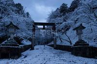 吉野 雪の装い - toshi の ならはまほろば