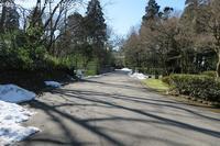 2017年1月 富山ファミリーパーク その2 - ハープの徒然草