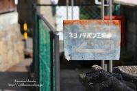 ネコノテパン工場 - *花音の調べ*