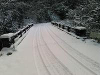積雪してました - 自伐型林業 施業日記