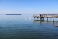 白鳥とトラジメーノ湖 - ペルージャ イタリア語・日本語教師 なおこのブログ - Fotoblog da Perugia