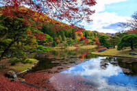 京都の紅葉2016 修学院離宮(浴龍池編) - 花景色-K.W.C. PhotoBlog
