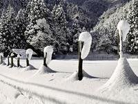JPCZ・・・雪かき・退け - 朽木小川より 「itiのデジカメ日記」 高島市の奥山・針畑郷からフォトエッセイ