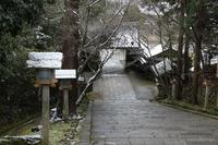 嵐山ぶらり雪探し - 浜千鳥写真館