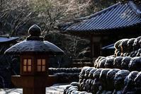 愛宕念仏寺 雪の羅漢さん - ちょっとそこまで