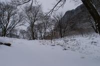 雪の屏風岩 - toshi の ならはまほろば