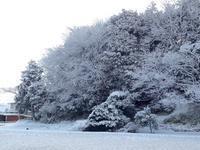 雪景色 - にっと&かふぇ