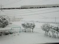 予報士が ビビらすワケだ 大雪だ! - 視線の先には