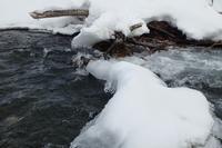 川歩き - オムイと森羅万象