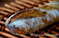 バゲット 2017-11 と ショコラオランジュ - 森の中でパンを楽しむ