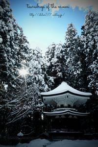 * 雪の中* - 心写心癒  ~心の鏡~