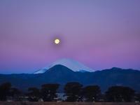 2017.2.12パール紅富士(酒匂川・大井高校) - ダイヤモンド△△追っかけ記録