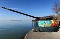 湖畔の巨大フライパンと白鳥、パッシンニャーノ - ペルージャ イタリア語・日本語教師 なおこのブログ - Fotoblog da Perugia