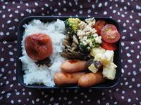 2/13(月)ウインナー弁当 - ぬま食堂