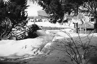 雪の中の四阿でひと休み - 照片画廊