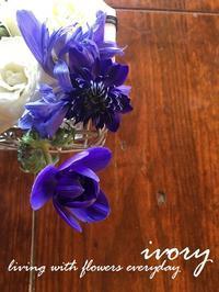 美しさと儚さの・・・・・ -  Flower and cafe 花空間 ivory (アイボリー)