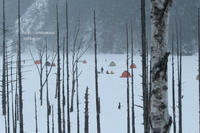 雪の自然湖 - 一瞬をみつめて