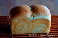ゆめきらりで山食と金柑 - 森の中でパンを楽しむ