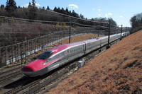 東北新幹線 沿線で編成写真 - 新幹線の写真