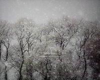 Falling snow IV - Illusion on the Borderline  II @へなちょこ魔術師