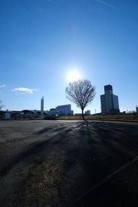 朝散歩 - minamiazabu de 散歩 with FUJIFILM