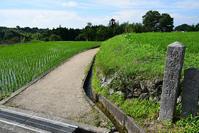 太平記を歩く。 その19 「楠公産湯の井戸」 大阪府南河内郡千早赤阪村 - 坂の上のサインボード