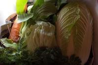 五島から来た野菜 - もるとゆらじお