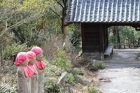 因島・白滝山 ① - 猪こっと猛進