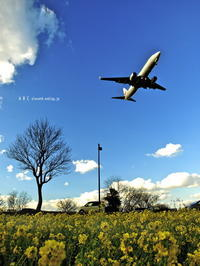 福岡空港 - A  B  C