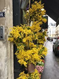 パリ便り - Chez-Nami