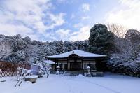 本願寺北山別院の雪景色 - 花景色-K.W.C. PhotoBlog