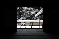 常照皇寺 雪景色 - ちょっとそこまで