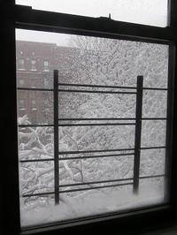 今更の大雪 - NYの小さな灯り ~ヘアメイク日記~
